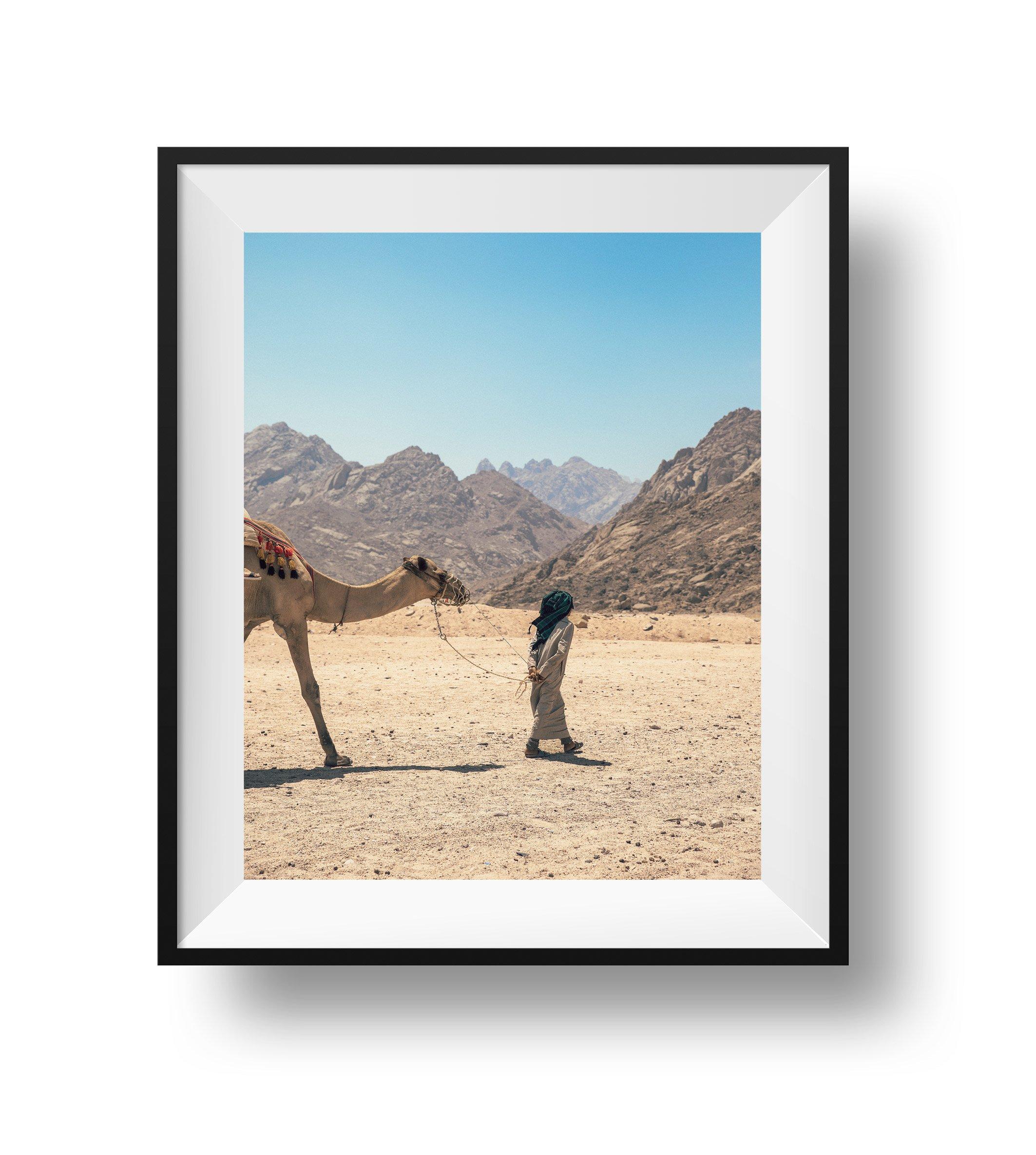 Eastern Sahara Desert